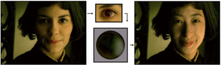 Eyes for Relighting