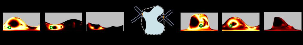 mvshape multiliklihood image