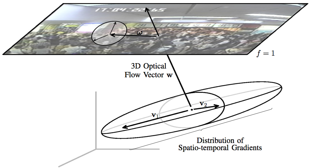 trackcrowd opticalflow image