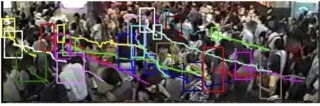 Tracking People in Crowds